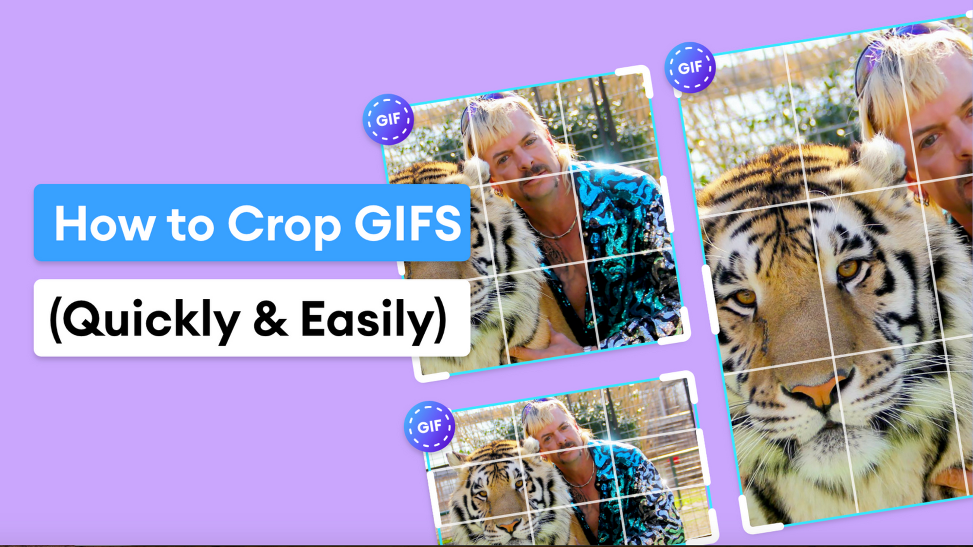 How To Crop a GIF Online For Free In Seconds